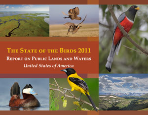 2011 State of the Birds report