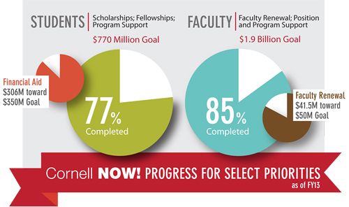 graphic showing fundraising progress in scholarships and faculty renewal
