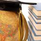 Second International Faculty Fellows cohort chosen
