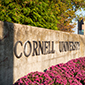 Cornell continues to monitor retirement funds and fees