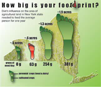 foodprint graphic