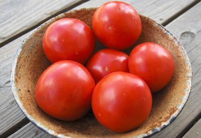 image Iron Lady tomatoes